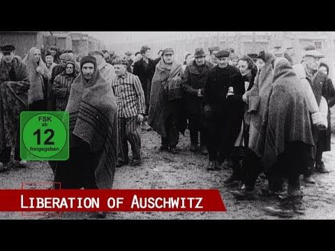 The Liberation of Auschwitz (includes 1945 original Red Army
