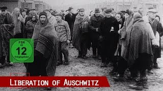 Baixar The Liberation of Auschwitz (includes 1945 original Red Army footage)