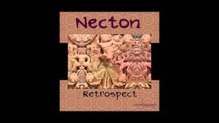 02: Necton -  Bob On Acid (Year 2000 Livemix).