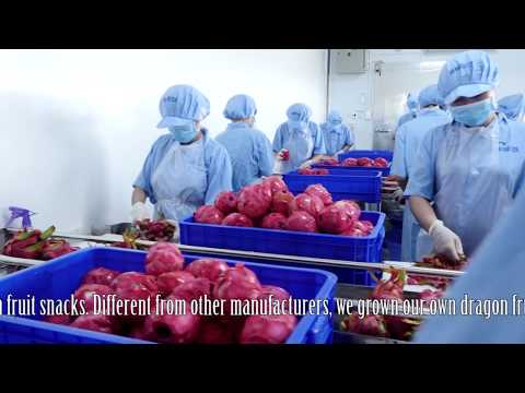 "Kim Hai Farm - ""Sustainable dragon fruit as its best"""