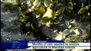Months Of Rain Needed To Restore Agriculture In Marshall Islands