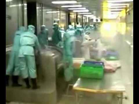 Обработка рыбы. Производство филе пангасиуса. Вьетнам
