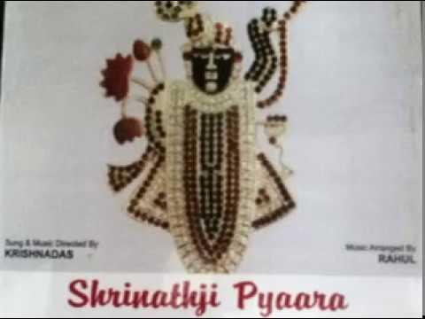Aavo Avo Shrinathji aavo tamne chabchabiya kari navdavu