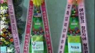 에이핑크 공식 팬클럽 팬더 1기 창단식 축하 쌀드리미화…