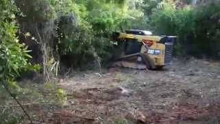 Land Clearing - Part 1 (Forestry Mulching)