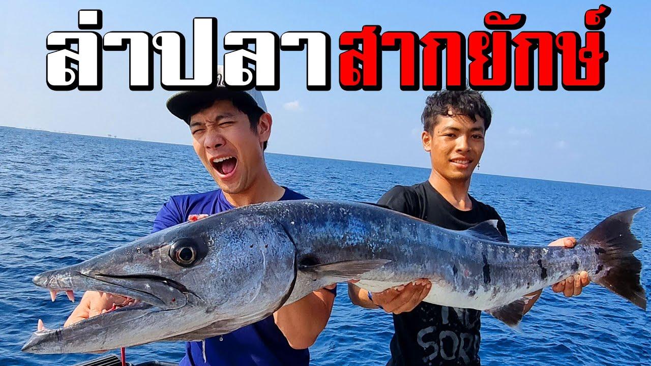 ล่าปลาสากยักษ์ ปลาปีศาจใหญ่ที่สุดในชีวิต!! Giant Barracuda fishing!! [คนหลงรส EP.77]