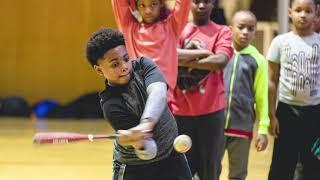 International Stars Baseball Academy of Detroit