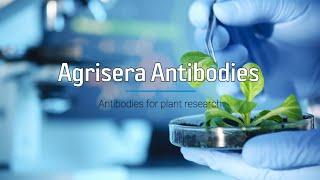 Agrisera Product Presentation