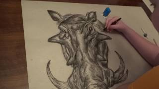Amazing 14 years Old Drawing Warthog (By Dusan Krtolica)