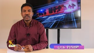 esat-news-in-depth-the-new-refugees-law-and-its-implication-january-212019