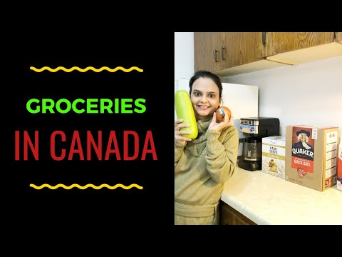 Grocery Shopping In Canada-Indian Vlogger In Canada