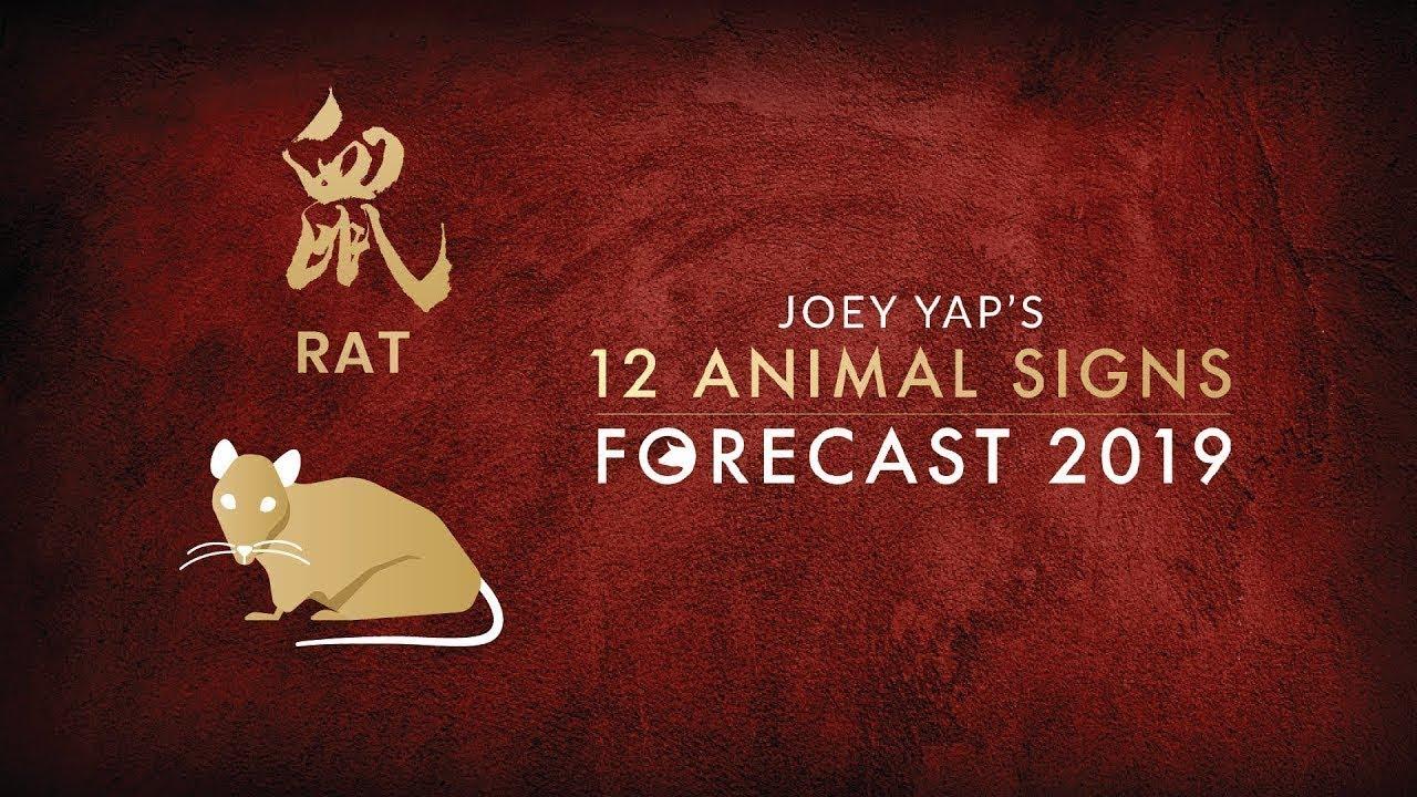 2019 Animal Sign Forecast: RAT [Joey Yap]