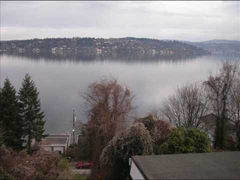 Seattle Wa Pressure Washing And Roof Cleaning And Moss