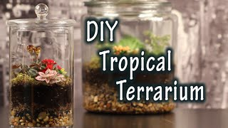 DIY Tutorial On How To Make A Terrarium For Plants In A Jar