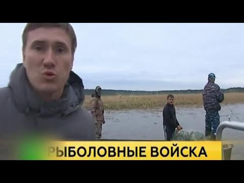 сайт знакомств город димитровград