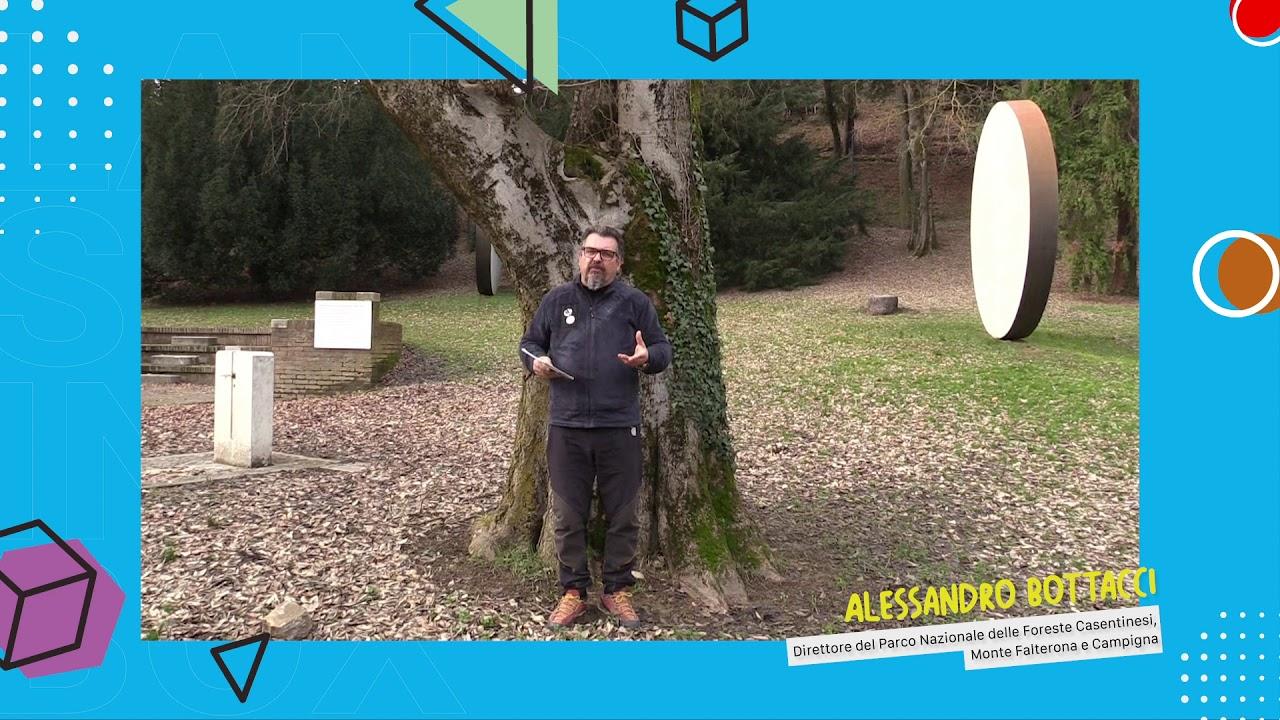 Alessandro Bottacci - Direttore Parco Nazionale delle Foreste Casentinesi / Landscape in a Box