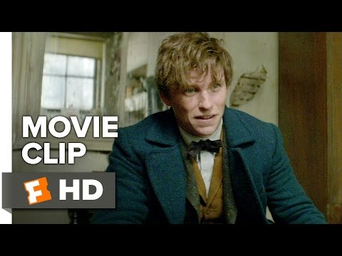 Fantastic Beasts and Where to Find Them Movie CLIP - Just a Smidge (2016) - Movie