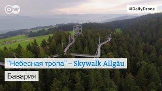 Небесная тропа  в баварском лесу