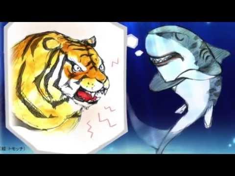 イタチザメ/Tiger Shark