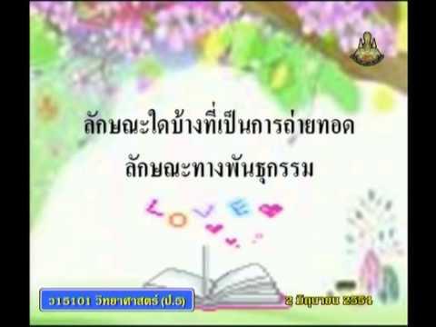 013 540602 P5sci A วิทยาศาสตร์ป 5