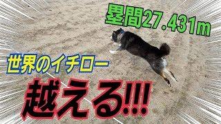 チャンネル登録よろしく!!! 41歳にして塁間の速さメジャー5位の記...