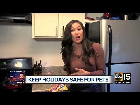 Keep your pets safe this holiday season!