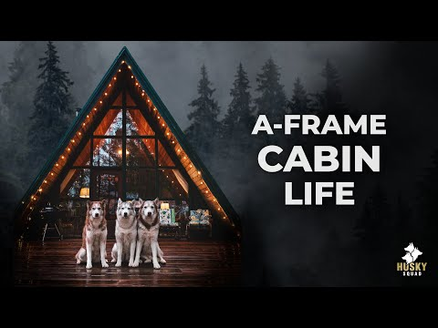 Washington A-frame Cabin With The HUSKY SQUAD
