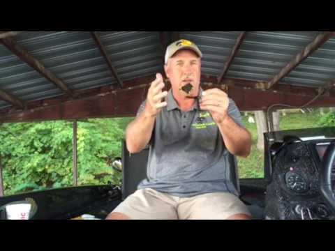 Lake of the ozarks fishing report 9/22/16 from joeslakeozarkguideservice.com