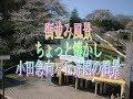 街並み風景・ちょっと懐かし・小田急向ヶ丘遊園の風景。