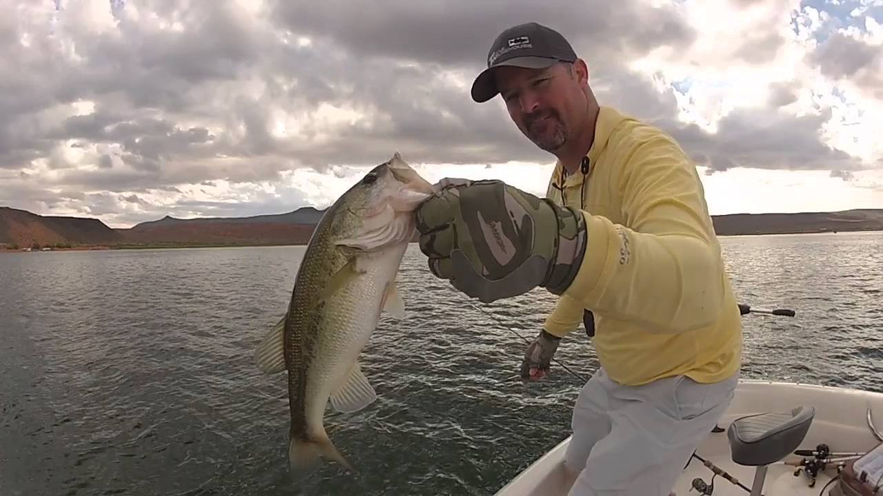 Sand hollow utah bass fishing fall 2015 youtube for Sand hollow fishing report