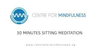 Mindfulness Sitting Meditation - 30 Minutes