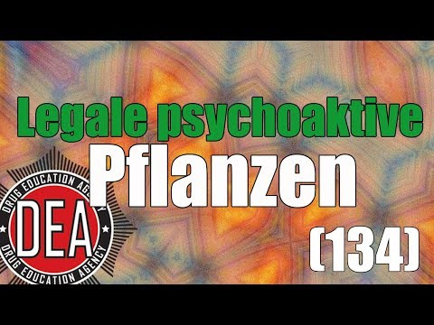 Legale psychoaktive Pflanzen | Drug Education Agency (134)