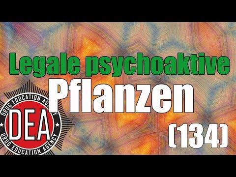 Legale psychoaktive Pflanzen