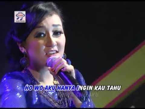 Elsa Safira - Hanya Ingin Kau Tau (Official Music Video)
