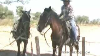 Argentina - The Chaco - Travel - Jim Rogers World Adventure