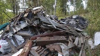 Обнаружил 25 мусорных навалов в лесу в Электроуглях - 13.09.2019