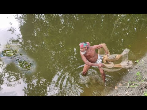 Most Amazing Cast Net Fishing-old Man Catching Huge Fish From Small Pond