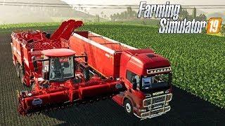 FARMING SIMULATOR 19 LIVE #157 - USIAMO LA HOLMER PER BARBABIETOLE - GAMEPLAY ITA
