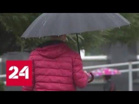 """""""Погода 24"""": погружение в осень - Россия 24"""