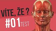 #01 ● VÍTE, ŽE...? / TEST