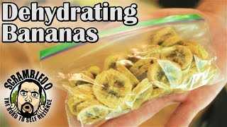 EXACTLY HOW TO DEHYDRATE BANANAS
