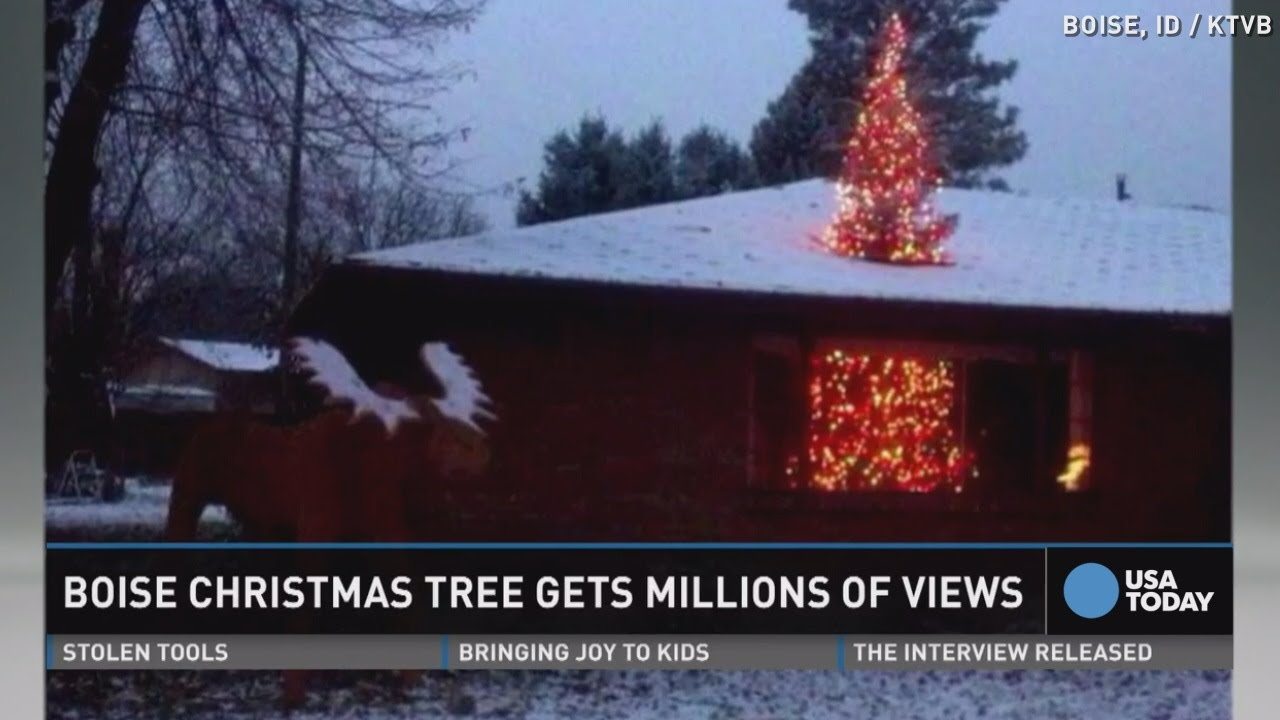 This Christmas Tree S Views Are Through The Roof Youtube