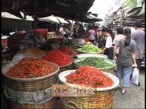 [다큐클래식] 아시아 음식문화 기행 11회-혀끝으로 느끼는 물과 절의 나라: 태국 / A Food Taste of Asia #11-Thai Food