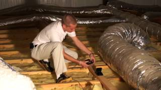 How To Get Rid Of Rodents In The Attic Pest Products Online