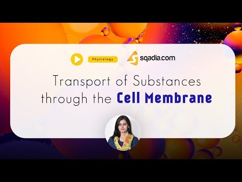 Transport of Substances through the Cell Membrane