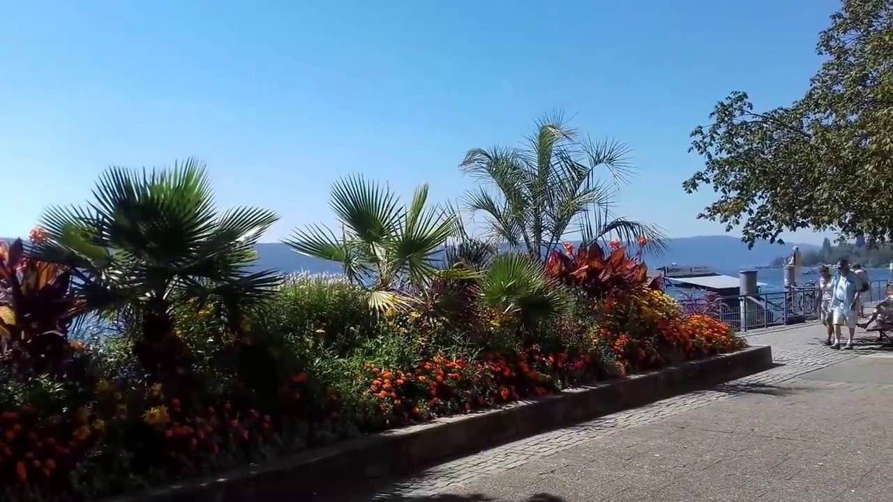 Bodensee Video