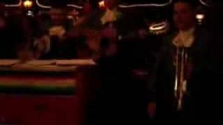 Dammit Mariachi  Blink 182 Tribute
