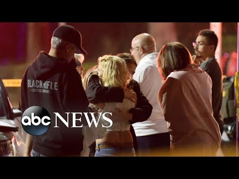 California bar massacre leaves 12 dead