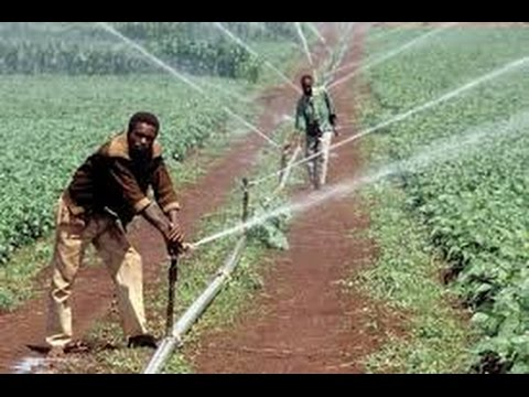 Free Water Movement - Drought Resistant and Year Round Farming for Africa