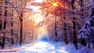 Flute & Piano Music | Winter Snowfall | Relaxing Ambient Music